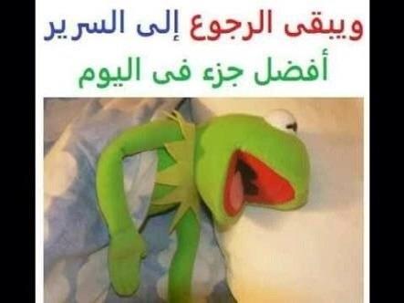 @nadooda8888 صباح الورد