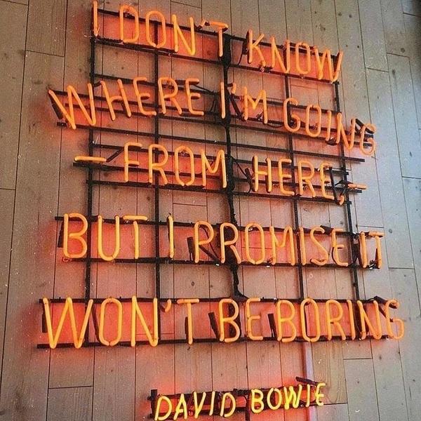#qotd #quotestoliveby #nevergetbored #davidbowie #wordsofwisdom #neonlights #neonlove