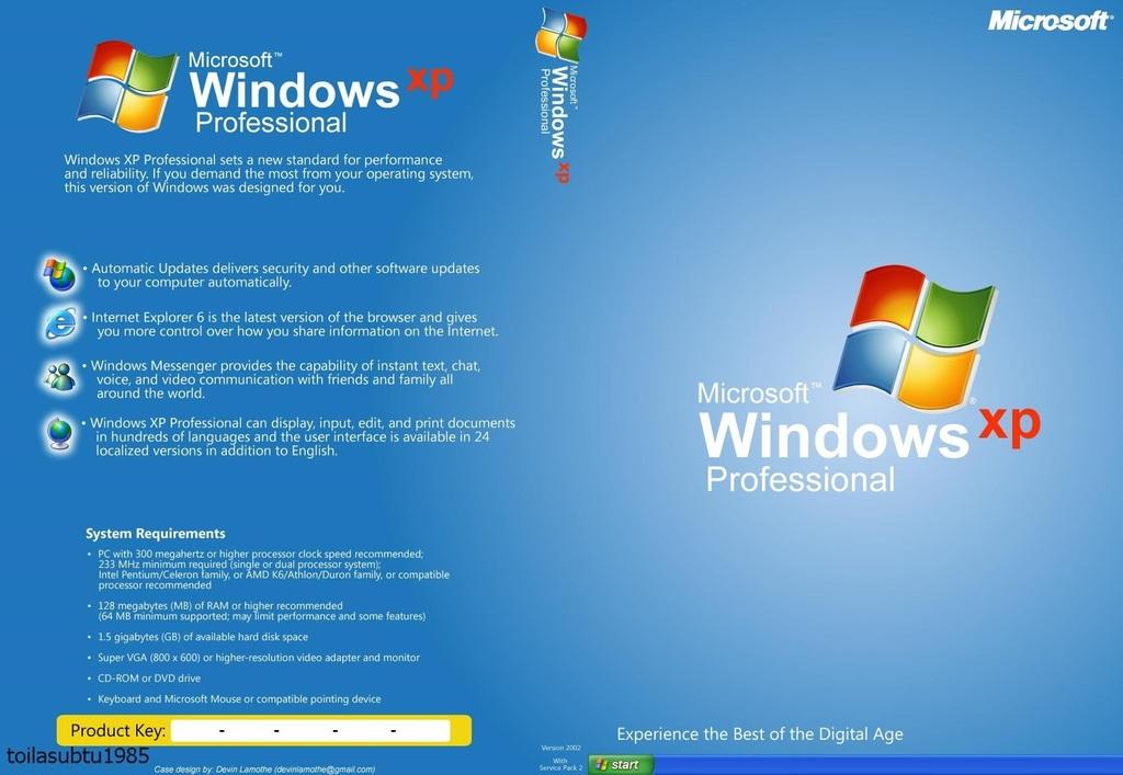 download internet explorer for microsoft windows xp professional version 2002