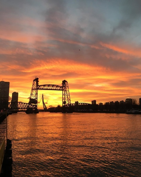Sky doesn't get more on fire than this.... #sunset  #bridges  #rotterdam  #explodingcolors