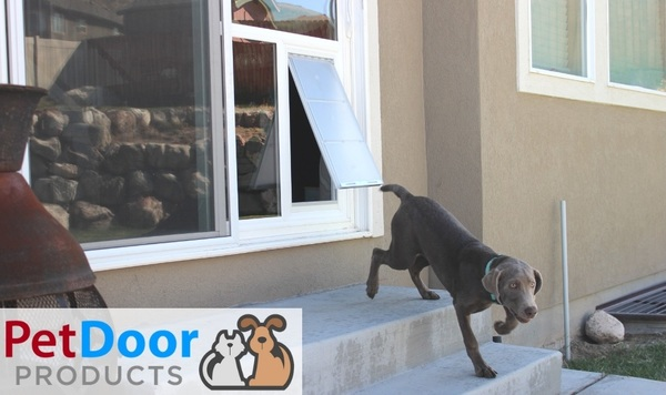 Pet Doors for Extra-Large Dogs