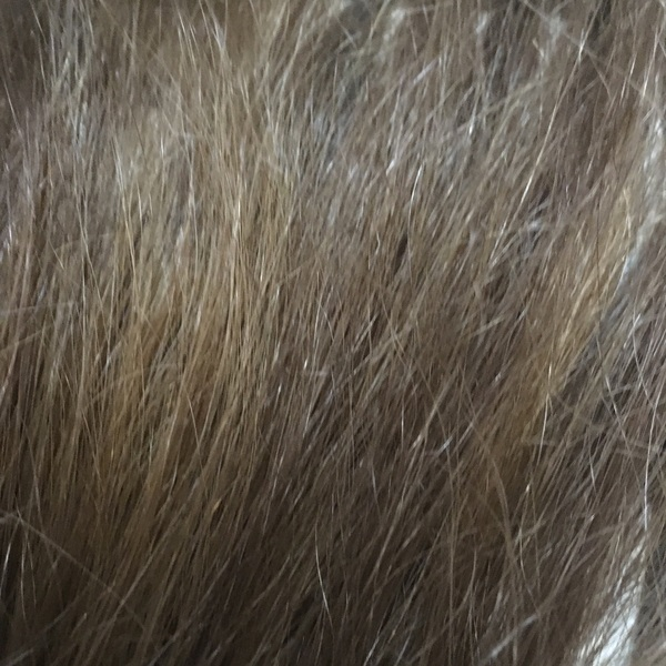 My hair looks an icky dull brown shade to me rn. What happened to my dirty blond hair w/the tiniest hint of red? :(