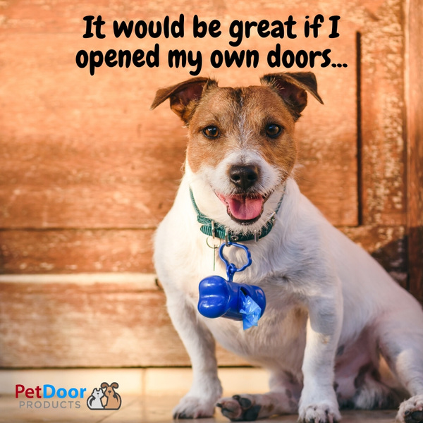 Add a pet-door to sliding glass doors with Pet Door Products quality pet door inserts for sliding glass. Give your pets the freedom they deserve! ??????  https://bit.ly/2HxD5Ho
