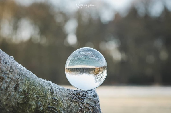 The glass ball.  #sphere #winter #nikond500 #d500 #natuur #nature #ngc #holland #defotoblogger #glassball #ball #photography #ig_nikon #ig_discover_nature #landscape #iamnikon #ig_nikon #bestofnetherlands #dutch #terapel #westerwolde #weather #crystal #ball #crystalball #theeye #photography