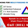 Mold fogging to clean the air of microscopic mold particles is an important step of mold remediation.  http://bit.ly/2gMtH77