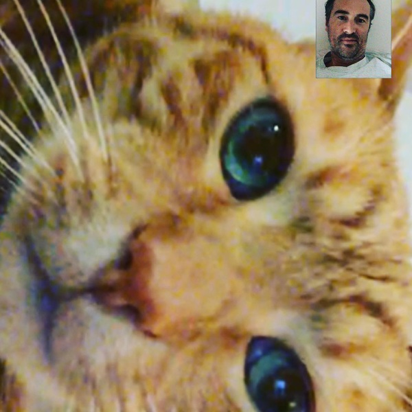 I can't have a FaceTime call with my daughter without her forcing me to also spend some time with our annoyed cat. 😾