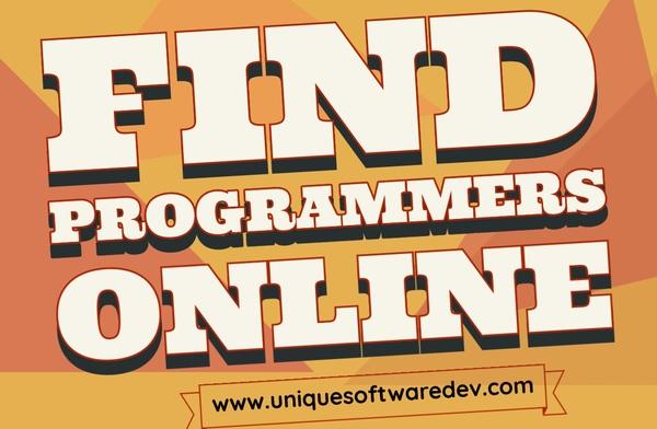 Find Programmers Online