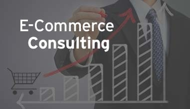 Ecommerce Consulting Company