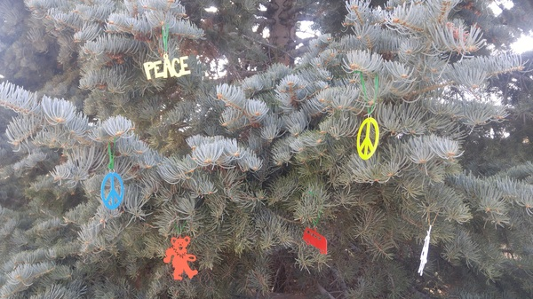 Hippie Christmas! #taos #nm #whitefir #christmastree