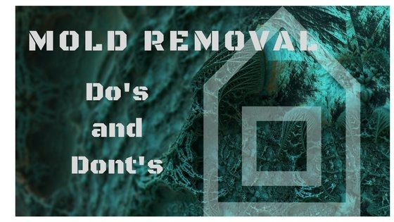 Check out our mold removal do's and don'ts.  http://bit.ly/2fEbfQt