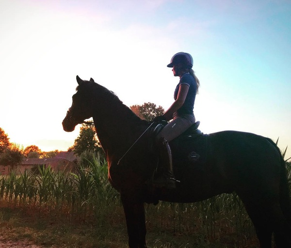 About last night!❤️ Sunset with Uniek 😍 #sunset #forest #uniek #horse #happy #lovemylife #weekend #enjoy #twohearts #equestrian