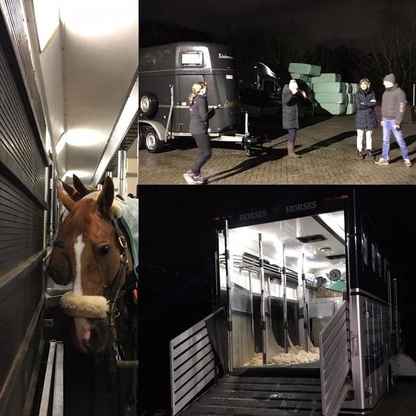 En off we go! @chigeneve here we come!😃🐴 @eventing_team @joycevdkuilen_ @tim_lips @laboratoires_audevard @horsepilot @horse_crystals @besterlypaardenvoeders #bavaria00eventingteam #zwitserland #genève #chigeneve