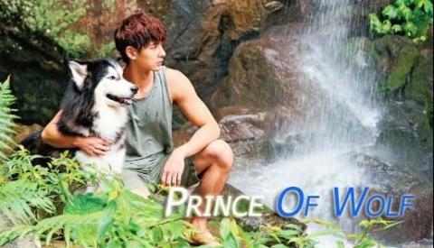 Sinopsis Drama Prince Of Wolf Episode 1-20