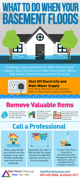 Utah Flooded Basement Cleanup Service