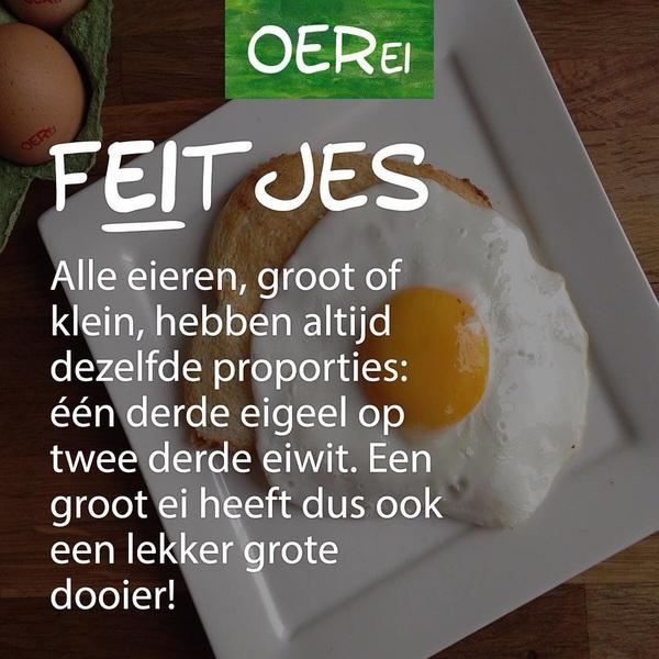 Een grote dooier is altijd mooier! 🙌 #OERei #fEItje #eggcellent
