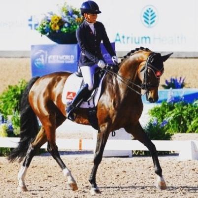 Happy memories ❤️ #tryon2018 #worldchampion #freestyle #Finn #TeamNL #legyield #equestrian #twohearts #memories #backhome #proud #eurostar_equestrian #ruitercap #roecklequestrian #petrieboots #customsaddlery