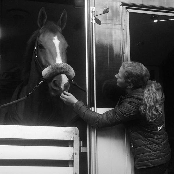 Onderweg naar Genève! @tim_lips komt samen in actie met Brent! #groom #indoorcross #ontheway #swiss #bavaria00eventingteam #trustequestrian #chigeneve samen met @elaine.pen @janvanbeek