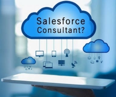 Knowledgeable Salesforce Consultant