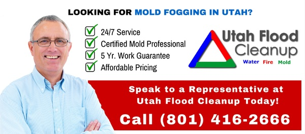 The process of wet fogging uses a fogger to expel a very fine mist to clean the air of mold spores and other microscopic contaminants.  http://bit.ly/2gMtH77