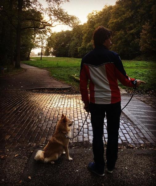 🍂🍁🌿🐾🍄🐿#sundaywalk #kralingsebos #rotterdam #lifeofbeer #kijkenvoorhetoversteken